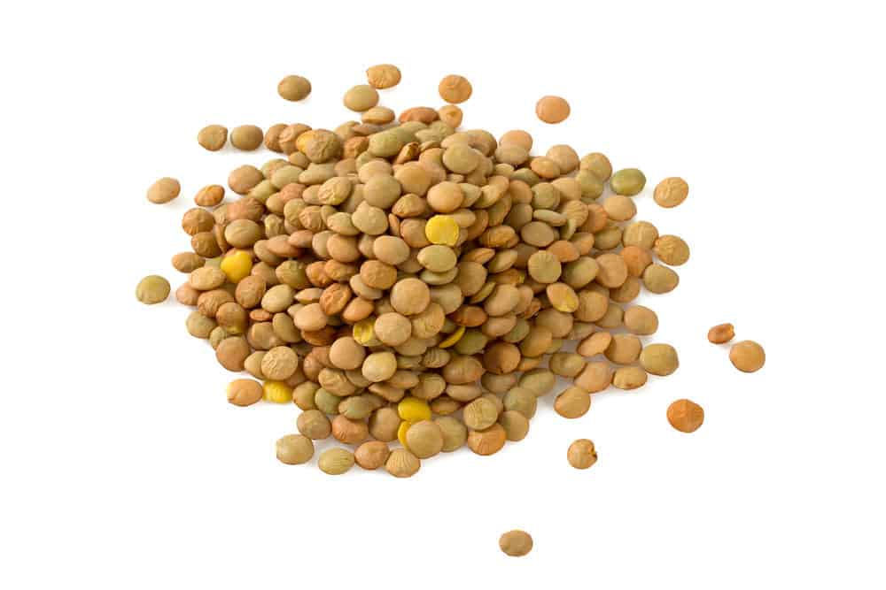 Lentils isolated on white.