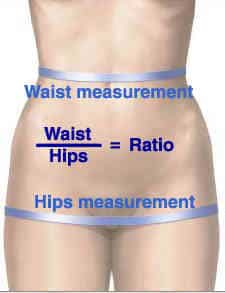 Waist hip ratio measurement