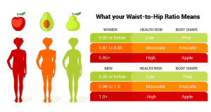 Waist to hip ratio chart