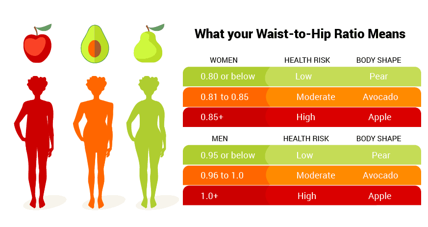 Waist-to-Hip Ratio: How to Calculate & 6 Abdominal Exercises to Make It Work